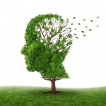 The Top 9 Myths about Alzheimer's Disease Uncovered!