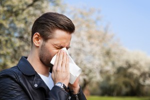 allergy Fighting Trick