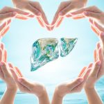 How to clean and improve functionality of liver in simple steps