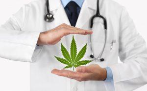 Can Marijuana Cure Diabetes?