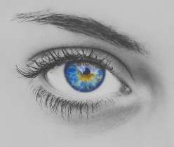 How to enhance your eyelashes and eyebrows_Banner