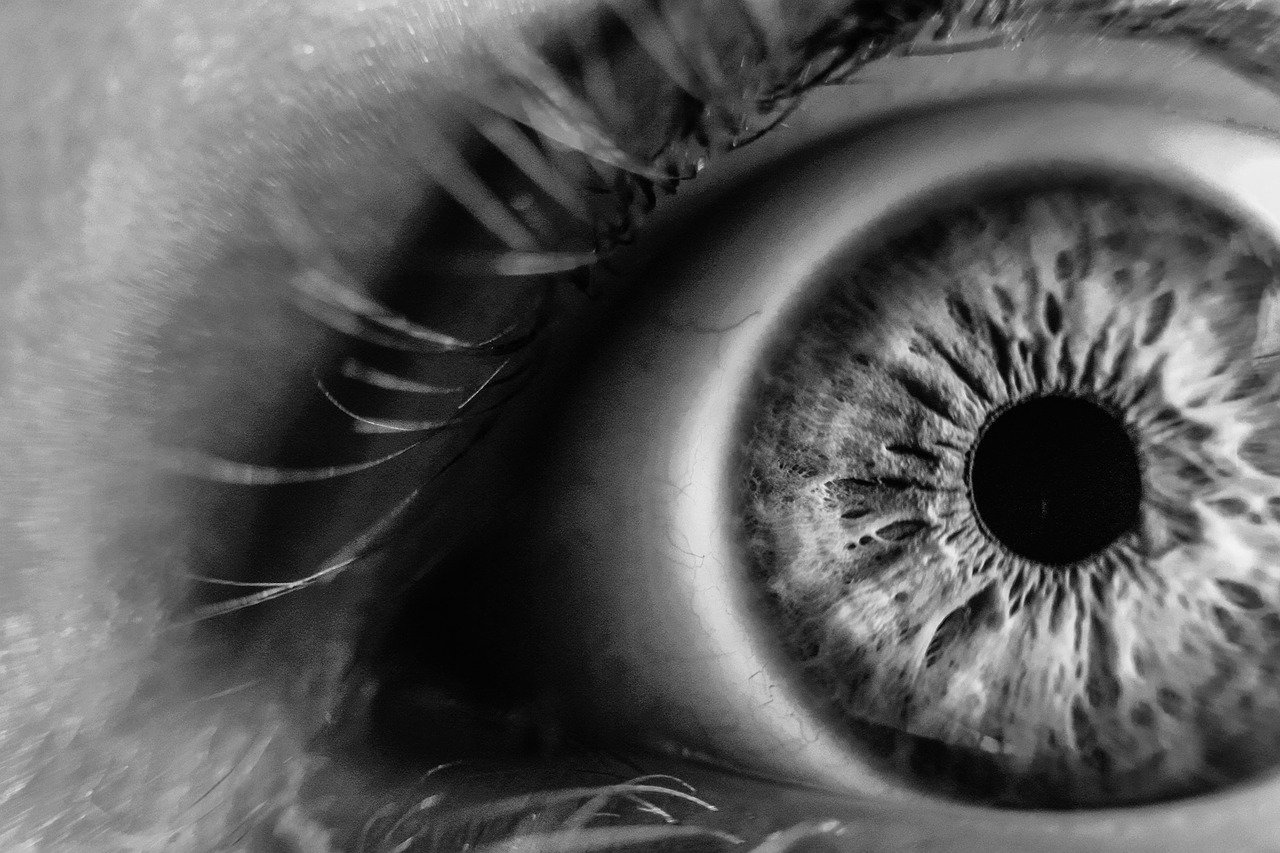 Best tips to keep Eye healthy and maintaining good eyesight